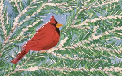 Cardinal on Canvas